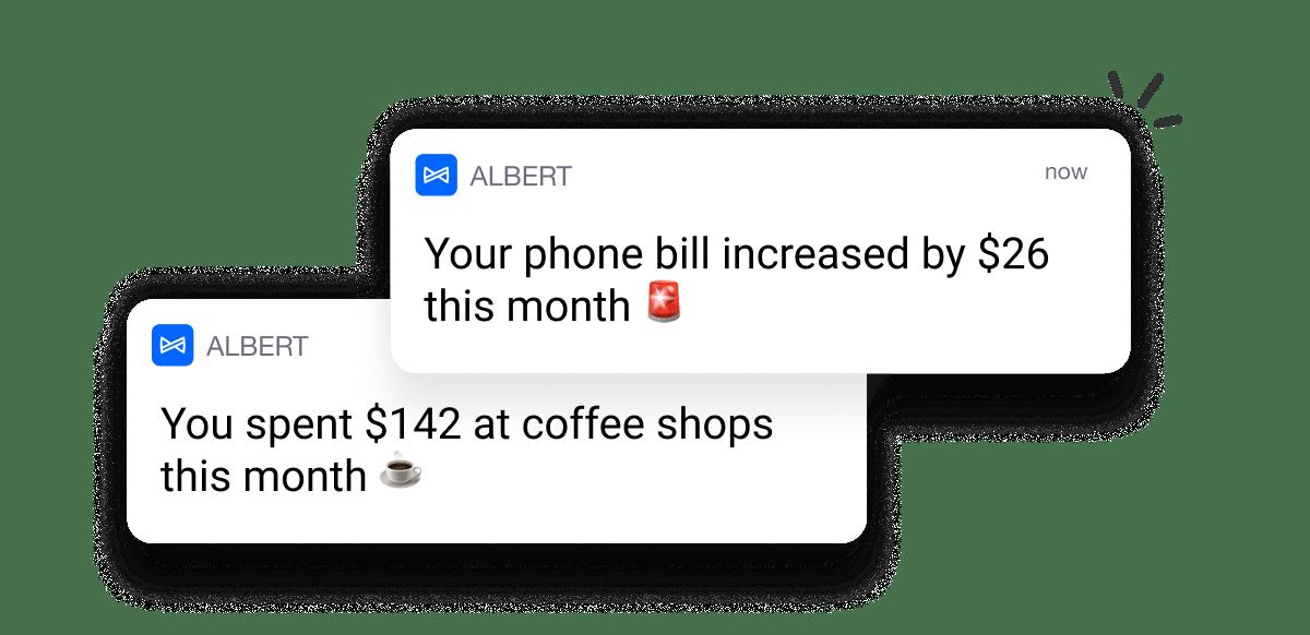 Budget alerts